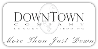 DownTown Company